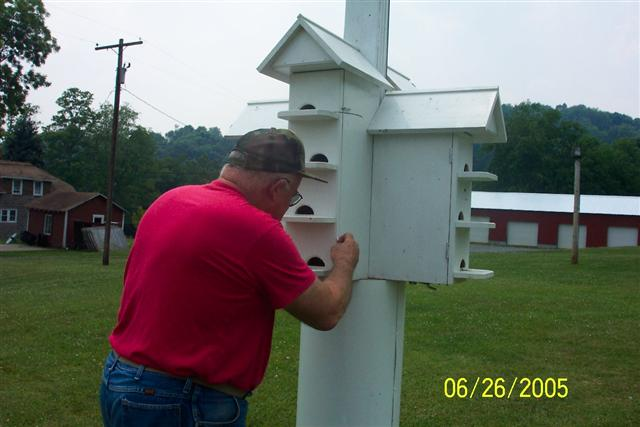 Checking the Purple Martin box