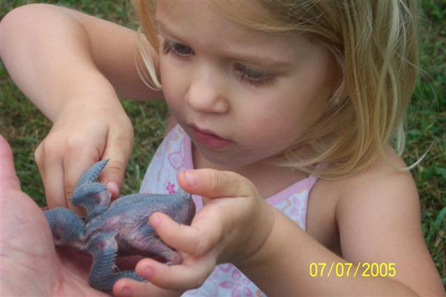 Little girl with baby Purple Martin